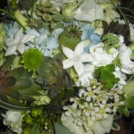 Lime green and light blue bouquet with Stephanotis.