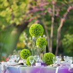 Flowering trees and shrubs add lovely color to accentuate the lime green rose ball centerpieces.