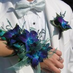 Blue Orchid Wristlet and Boutonniere
